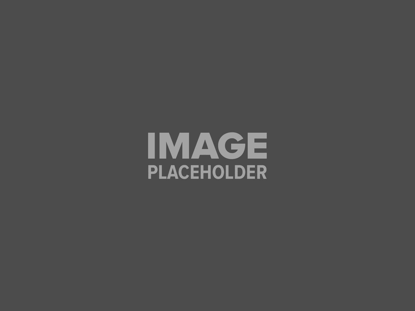 pojo-placeholder-1